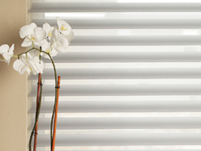 Sheer Window Shadings